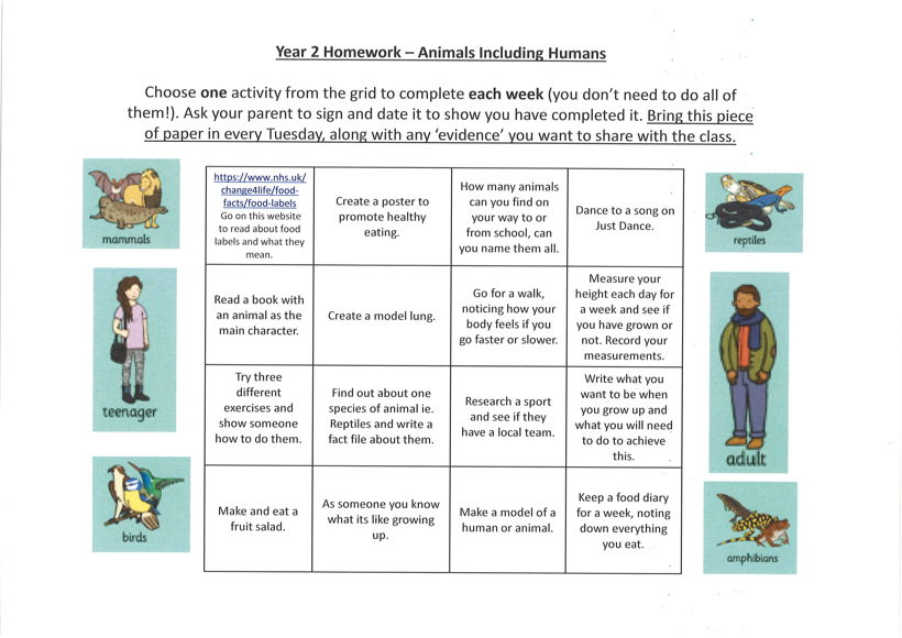 Holly class homework