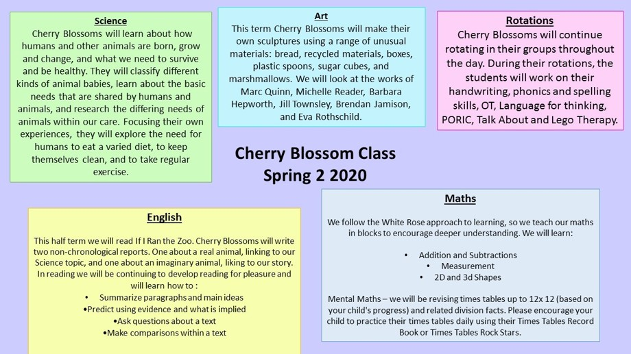Curriculum overview spring 2cb