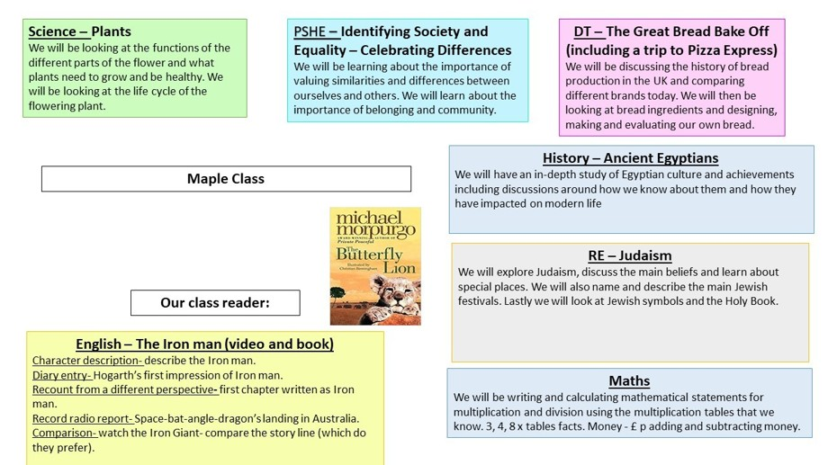 Curriculum overview year3