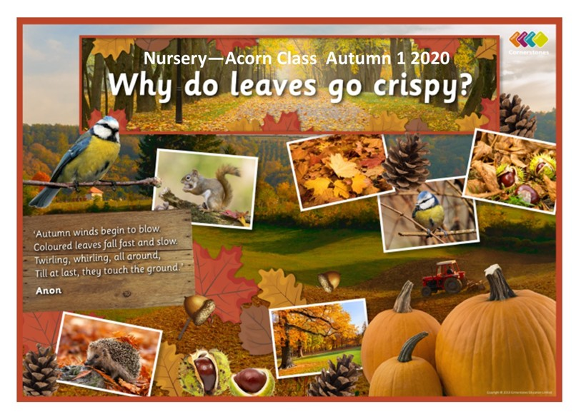 Why do leaves go crispy termly overview