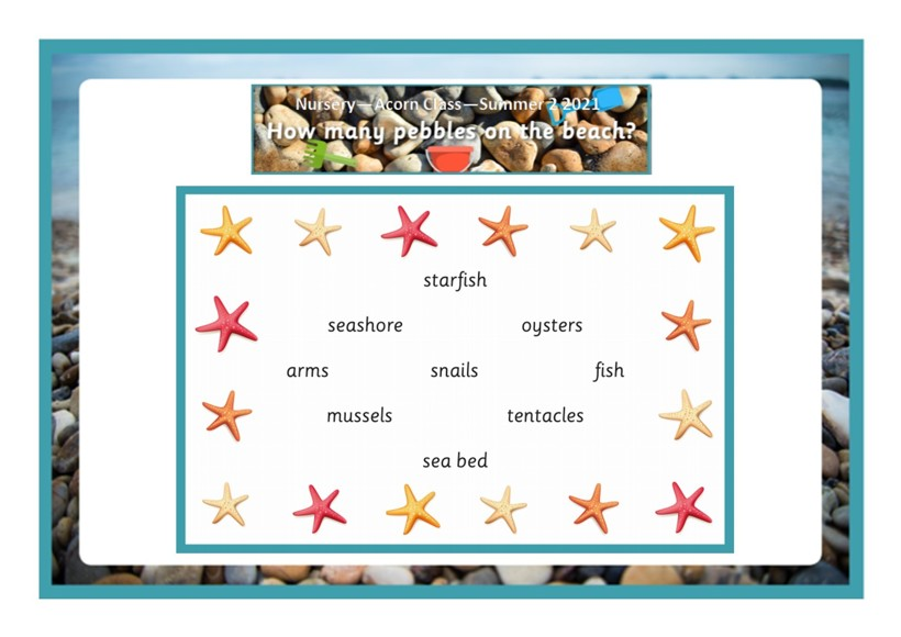 How many pebbles on the beach termly overview3
